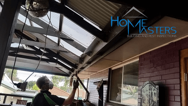 Pest Control Adelaide – HomeMasters