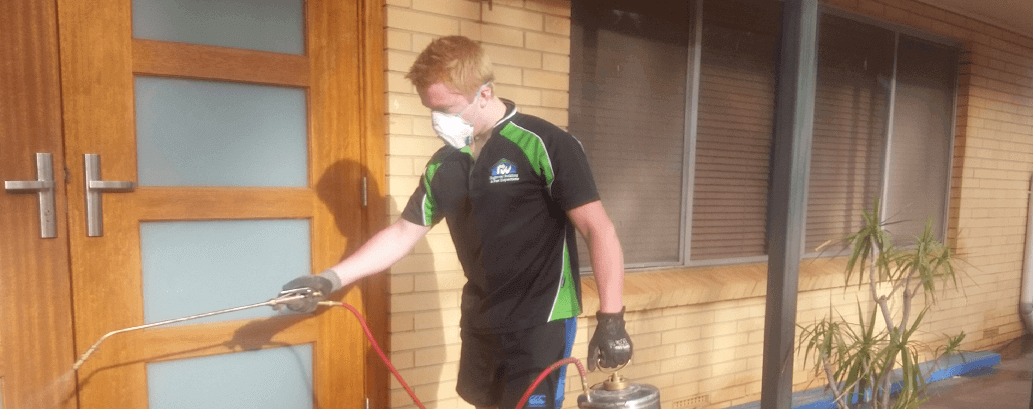 homemasters building inspection and pest inspections adelaide